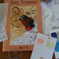 Livre de coloriage Steampunk de Rose Célestine + Concours